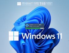 Windows11 64位专业精简版 V2021.08