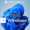 Windows11 Pro 22000.120 适度优化二合一精简版 V2021.08