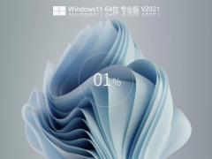 全新Windows11 Build 22000.120简体中文版 V2021.08