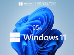 Windows11 Build 22000.120 专业版系统 V2021.08
